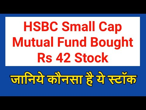 HSBC Small Cap Mutual Fund Bought Rs 42 Stock | SSInfra Stock Review