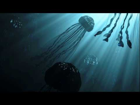 Create an underwater scene in 3D | TUTPAD Course Introduction