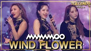 [HOT] MAMAMOO - Paint Me+Wind flower+Starry Night+Egotistic