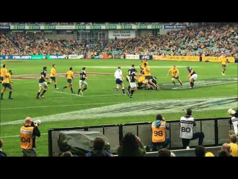 2017 06 17 Wallabies v Scotland