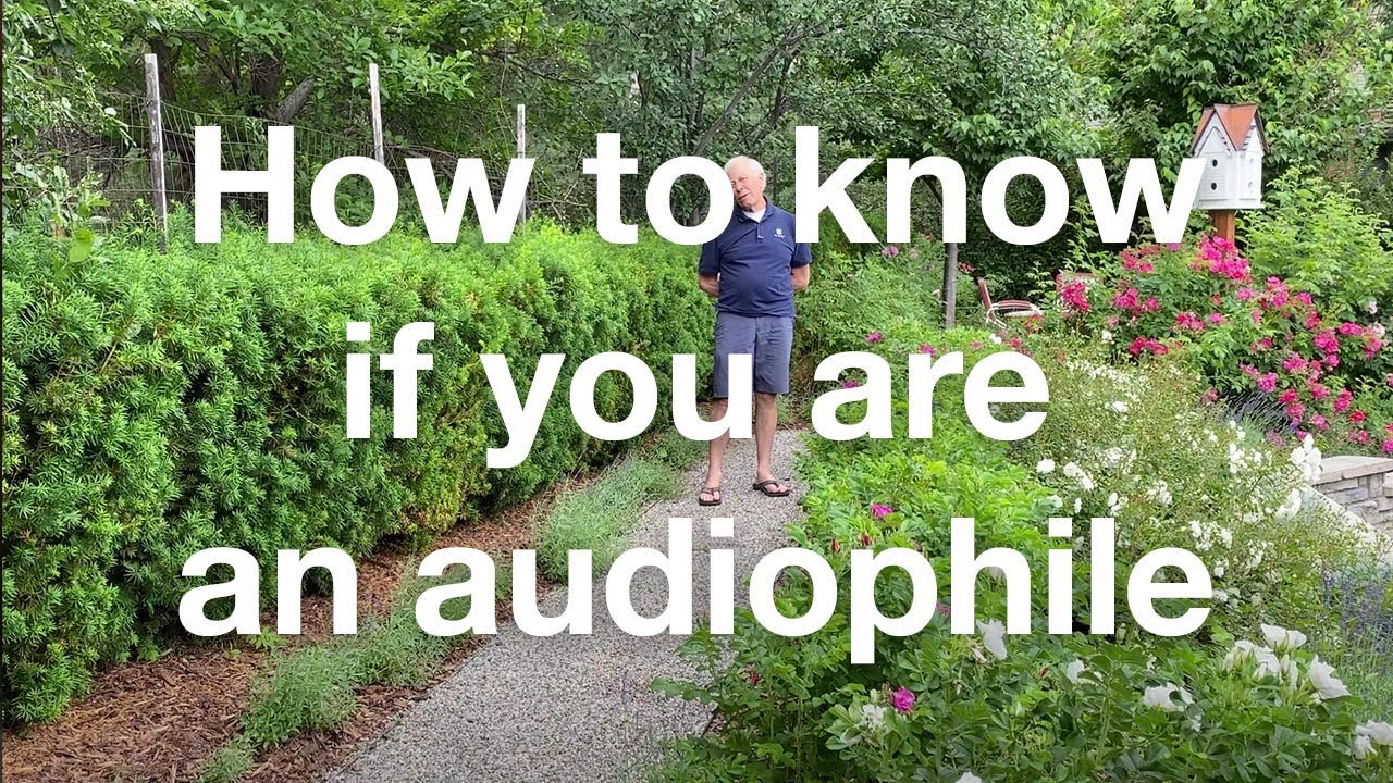 How to tell if you're an audiophile