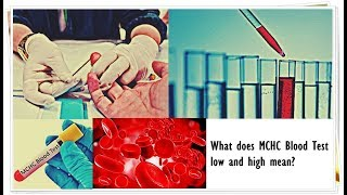 MCHC Blood Test - Low, Normal, High