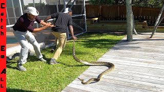 10-foot-giant-stealing-pets-caught-in-my-backyard