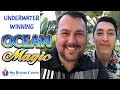 Tons of FREE SPINS on OCEAN MAGIC SLOT MACHINE at SPA RESORT CASINO