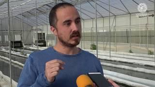Un grupo de investigación de la UAL participa en un proyecto para incorporar microalgas en alimentos