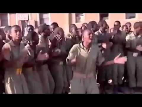 Eritrean hot music in sawa