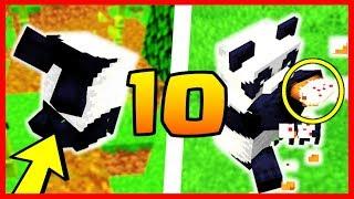 10 CHOSES QUE VOUS NE SAVEZ PAS SUR LES PANDAS MINECRAFT 1.14 !