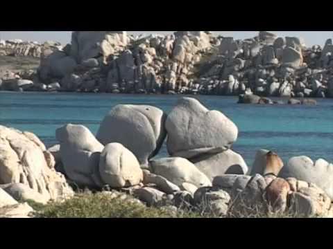 AVEC Valore Vacanza 2015 – Italia Senior – Sardegna La Plage Noir ...