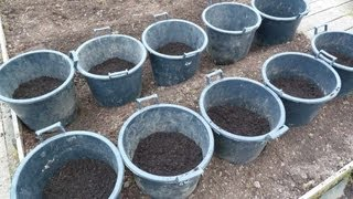 Allotment Diary : How to Plant / Grow  potatoes in containers