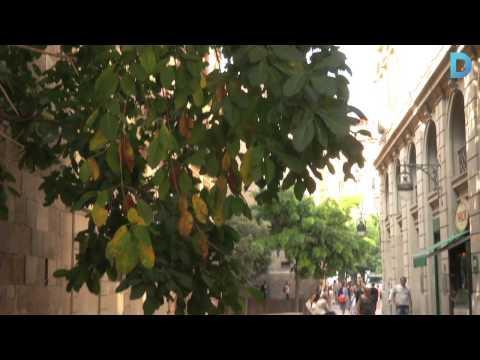 Ciutat Vella reordenarà la Via Laietana per afavorir el pas dels vianants