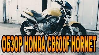 Обзор мотоцикла HONDA CB600F HORNET