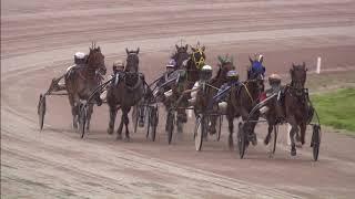 Vidéo de la course PMU PRIX PIKMEERCRUISER GROU