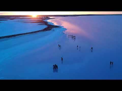 Lake Tyrrell 天空之镜 航拍