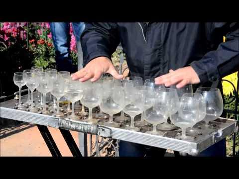 Игра на бокалах с водой в Никитском ботаническом саду