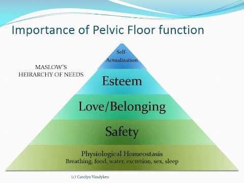 Pelvic Physiotherapy - to Kegel or Not?
