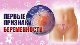 видео Первые признаки беременности до месячных