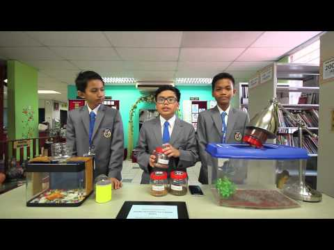 ITEX 2015 - MYIE Gold Medalist_SK Bukit Jalil_Phone Activated Fish Feeder (PAFF)