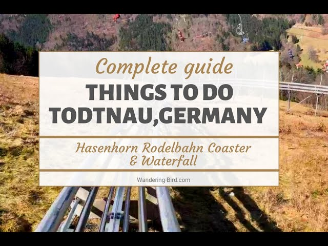 Best things to do in Todtnau- the Hasenhorn Rodelbahn Toboggan run and the Todtnau Waterfall