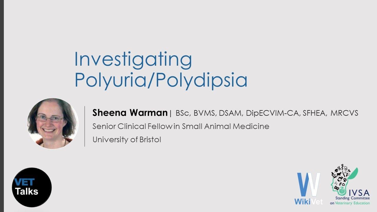 polyuria polyphagia polydipsia fogyás fáradtság)