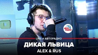 Download 🅰️ Alex & Rus - Дикая Львица (LIVE @ Авторадио) Mp3 and Videos
