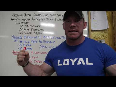 FREE STRENGTH PROGRAM!! How I Set Up the Conjugate Method