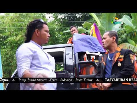 Download Lagu tumono perjuangan dan doa - new pallapa gemblung mp3