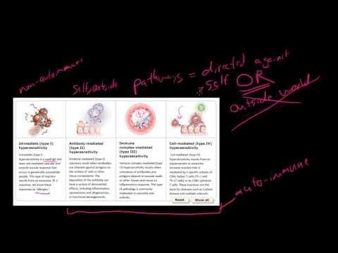 88P Hypersensitivity vs Autoimmunity or Autoimmunity vs Hypersensitivity