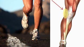 Da do atrás de parte trás joelho esquerda dói perna