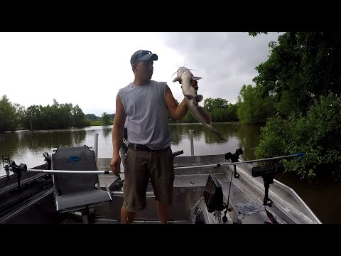 Jug Fishing For Catfish
