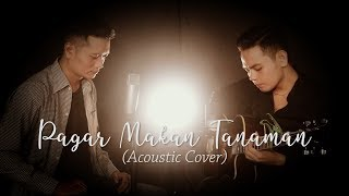 Pagar Makan Tanaman (Mansyur S) - Andrey Arief feat Sam Hasibuan (Acoustic Cover)