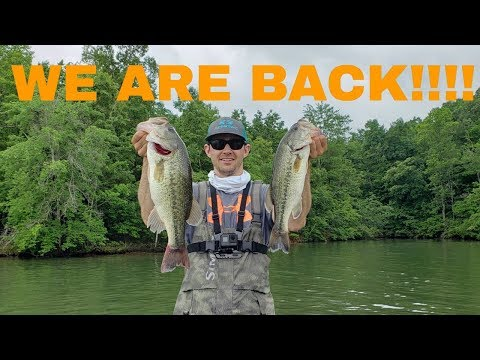We BACK!!!!!!! (Morristown Marine - Watts Bar - 2019)