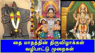 தை மாதத்தின் திருவிழாக்கள் – வழிபாட்டு முறைகள் | Thai Pongal | Britain Tamil Bhakthi