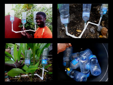 Recycling Bottle Homemade Drip Irrigation System Agrosuede Youtube