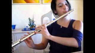 Rolling in the Deep (Adele) - Flauta Transversal