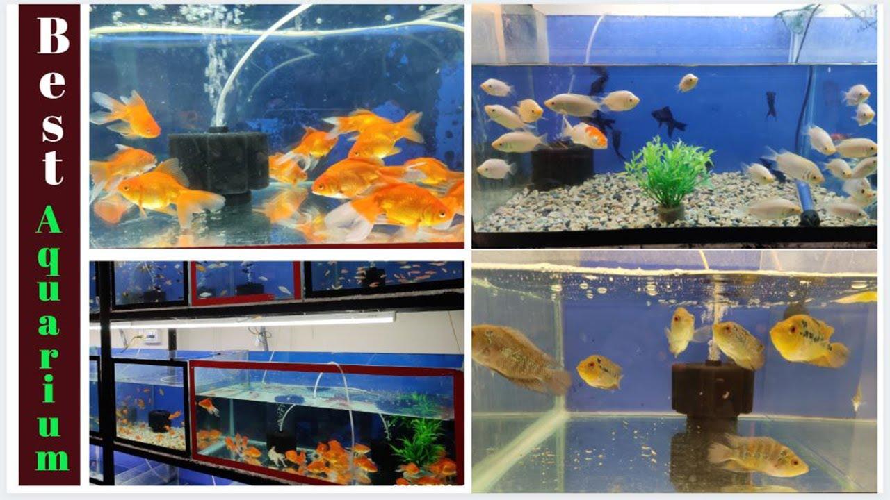 Beste Aquarium Marke