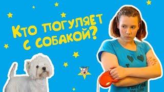 """""""Кто погуляет с собакой"""" - Веселые истории от Студии Звёзд"""