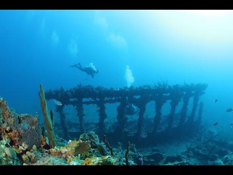 Underwater World of British Virgin Islands HD 1080