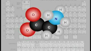 Albion University - Organic and Inorganic Nutritional Minerals