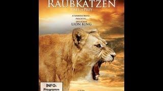 Im Königreich der Raubkatzen - Cats of Prey