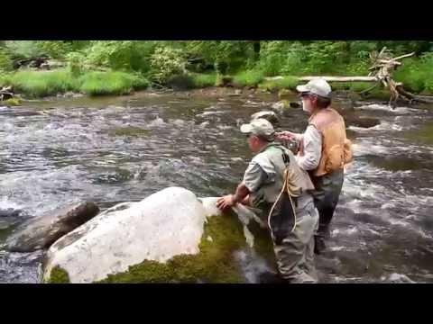 Hazel Creek Trout Fishing - Great Smoky Mountain National Park