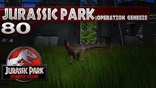 Jurassic Park: Operation Genesis || 80 || Deinonychus