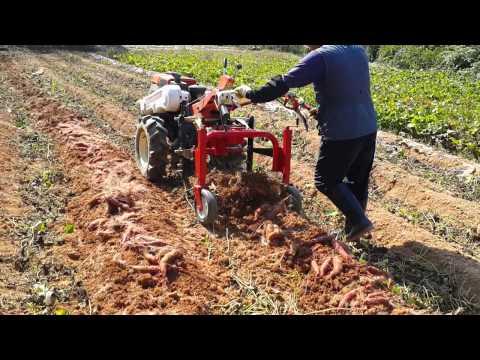 [대신종합농기계]고구마수확기(경운기용)DS-650[DaeShinAgricultureMachinary]