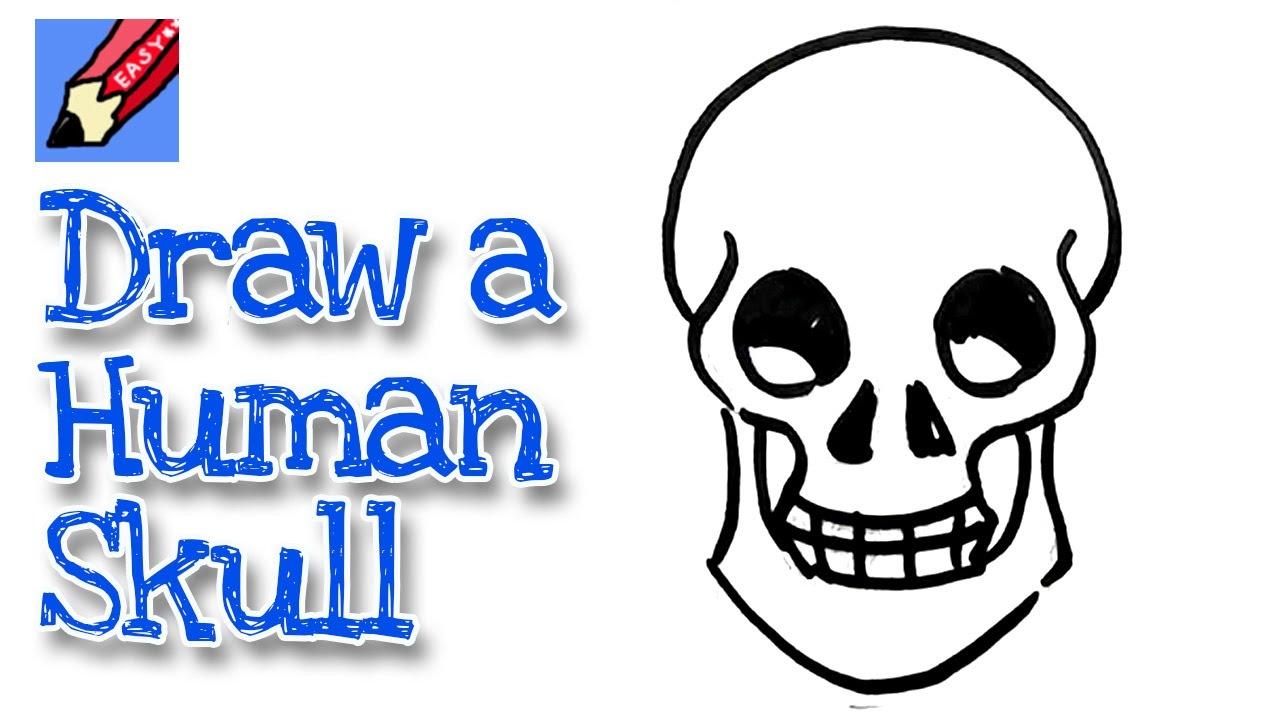 Easy Beginner Skull: How To Draw A Human Skull