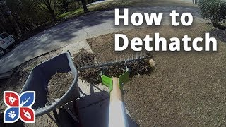 Do My Own Lawn Care - How to Dethatch