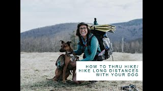 How to Thru Hike/Hike Long Distances with your Dog