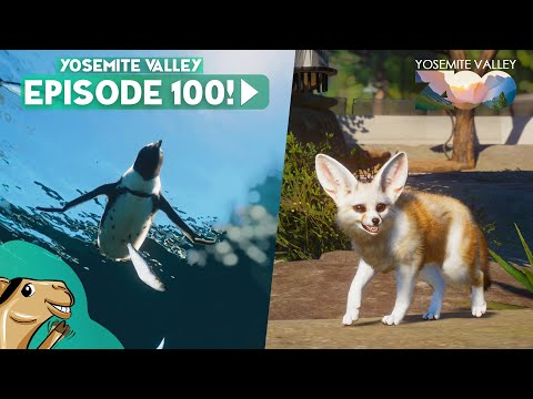 Episode 100 - Fennec Fox, African Penguin & More - Yosemite Valley Planet Zoo |