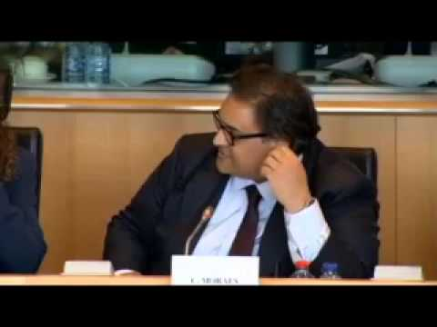 GAP, NSA Whistleblowers Testify at EU Parliament 9/30/13