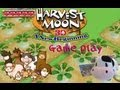 003 Harvest Moon A New Beginning Game Play