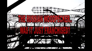 THE RUSSIAN WOODPECKER - SUCCESSFUL PROJECTS NEVER DIE. THEY GET WOVEN INTO FUTURE TECH.