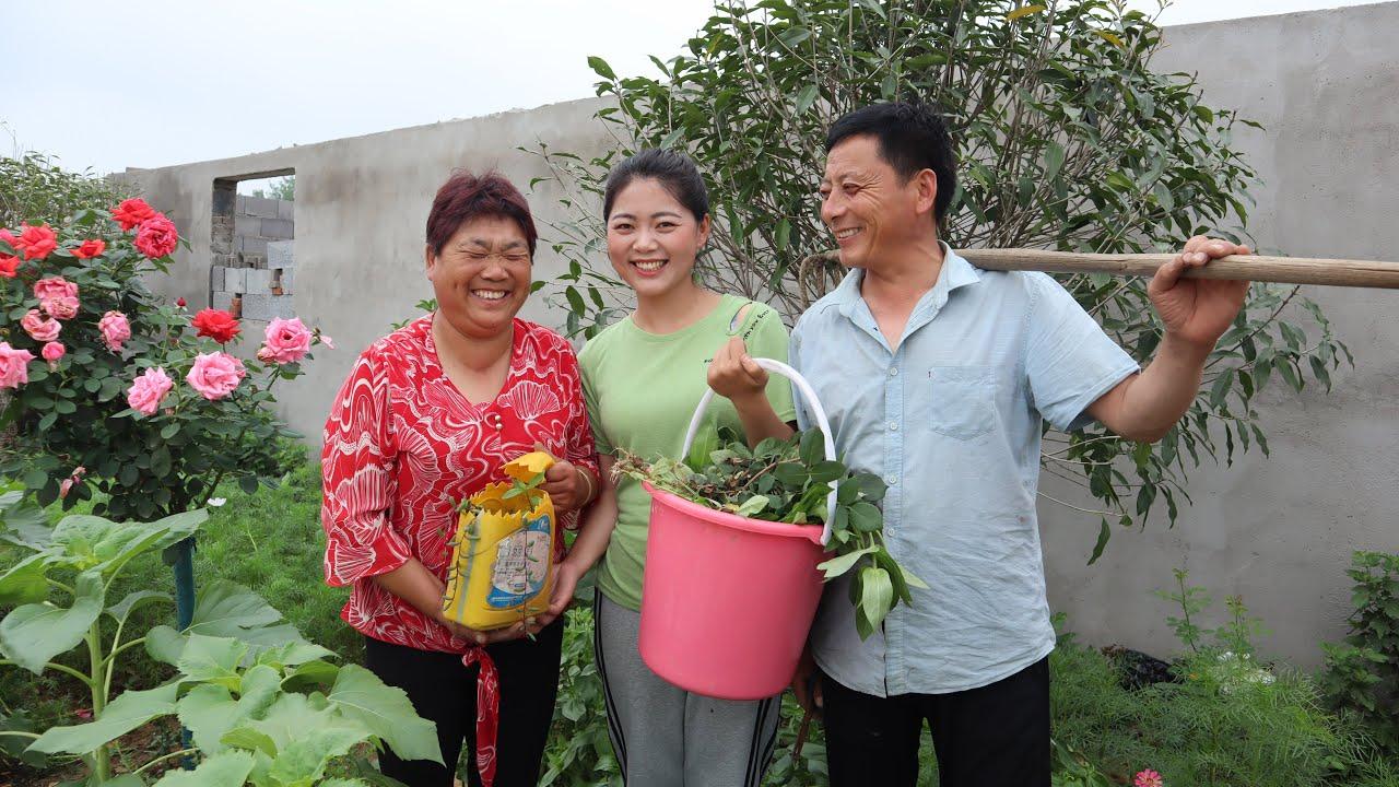 老爸打理小花園,用心呵護著老媽的花園夢,這樣的愛情讓人羨慕